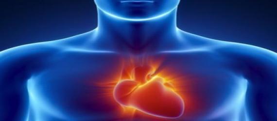 ارتباط بیماری های لثه و بیماری های قلبی